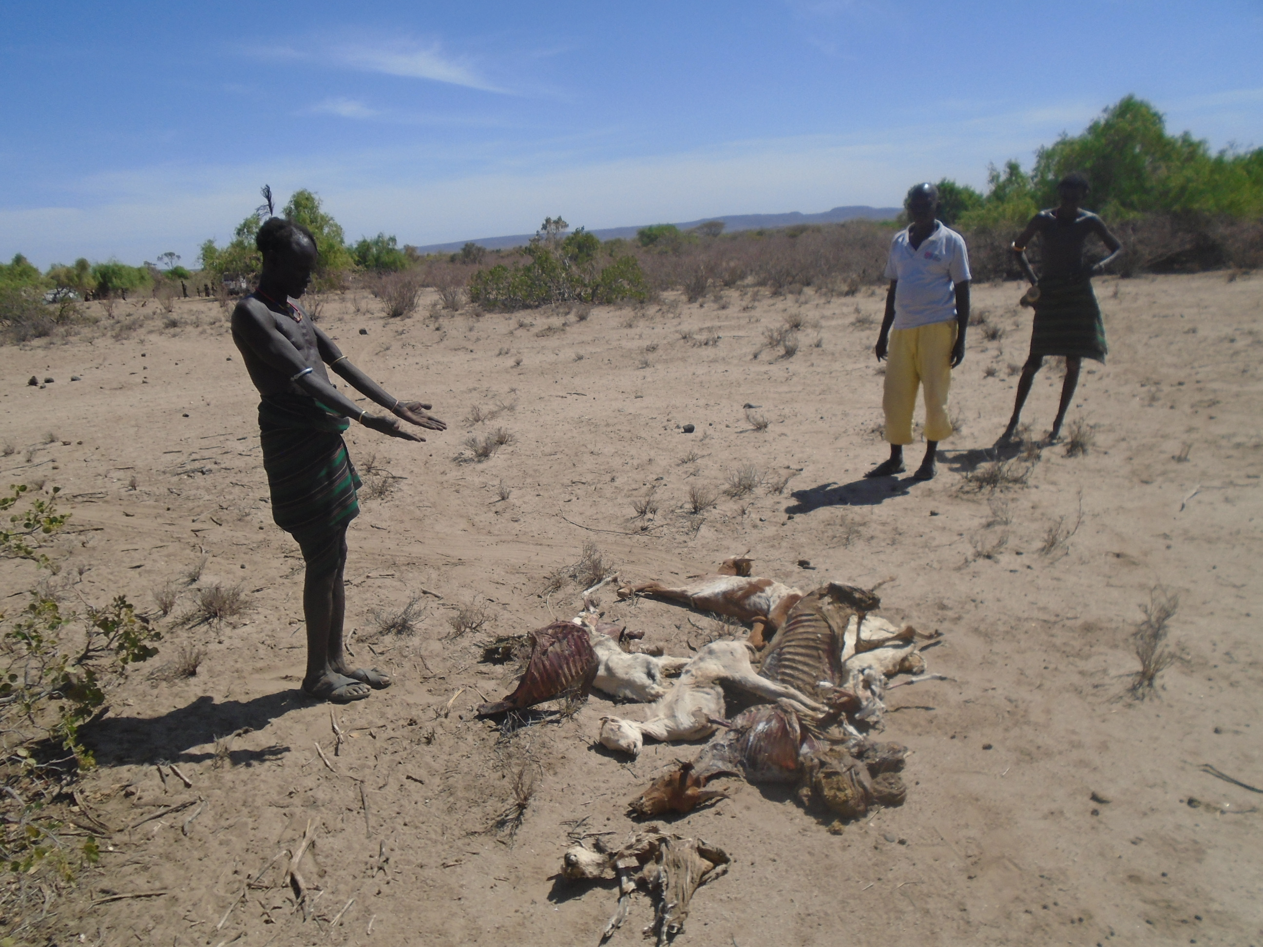 In northern Kenya, around 2.7 million people are living in the grip of a punishing drought. Photo: Malteser International