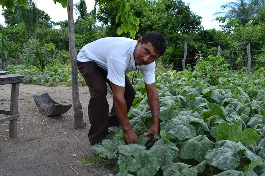 Obencio Uriana was given training in new farming methods. Photo: Malteser International
