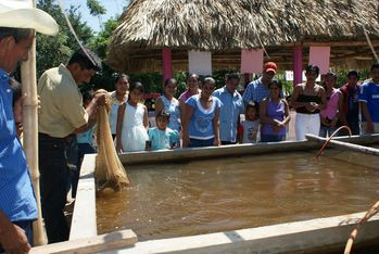 The construction of a fish breeding plant ensured the income of more than 100 families